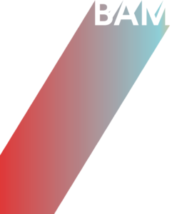 bam-projects.com - BAM projects
