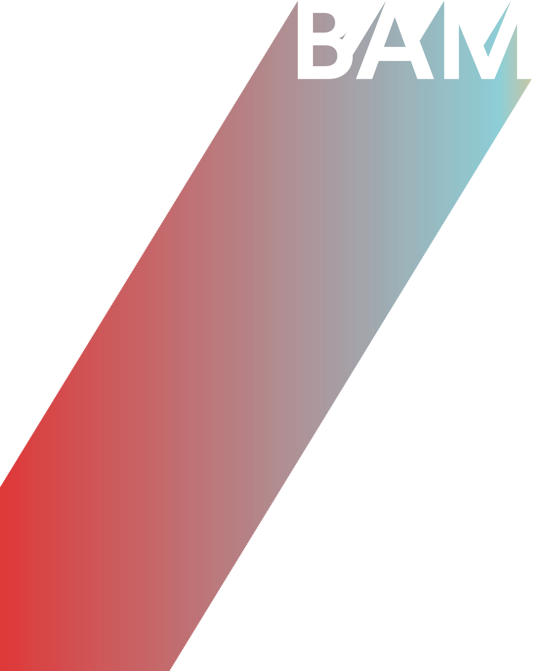 BAM projects